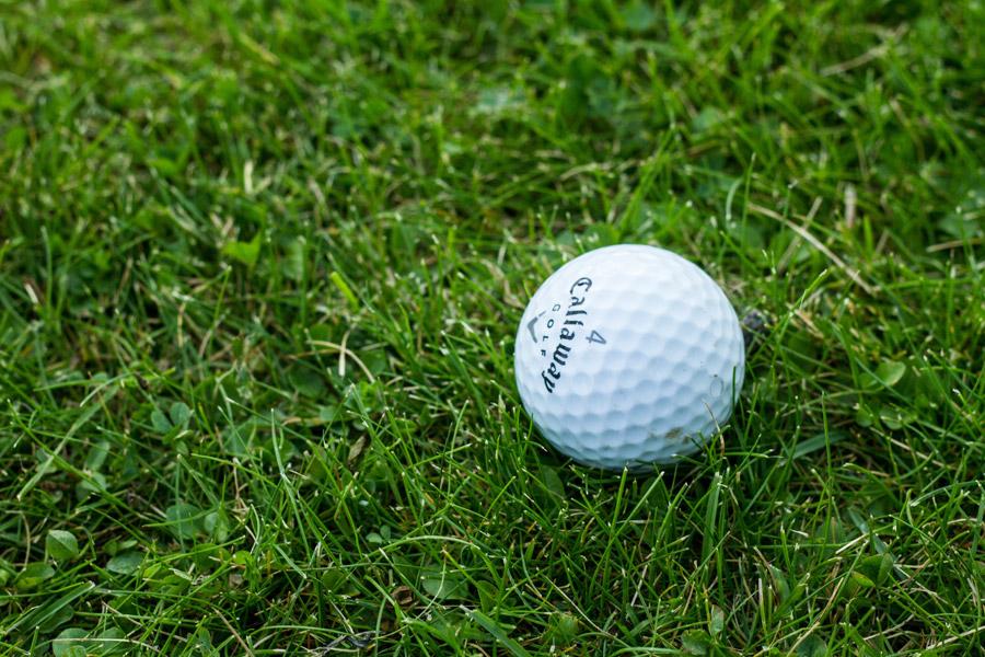 えびすや ゴルフ楽天店